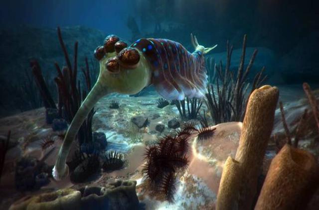 这可能是目前最好的VR纪录片:5亿年前的海底原来是这样