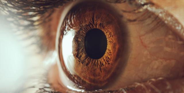 澳大利亚开发仿生眼球帮助盲人复明
