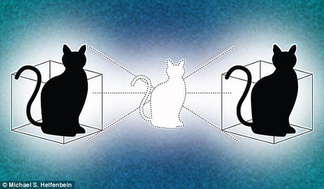 物理学家首次实现同处两地的薛定谔猫