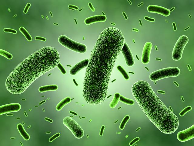 细菌红蓝手绘图