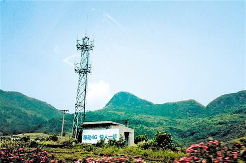 农村4G提速 电信联通获低频段红利