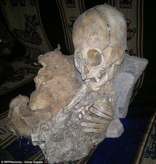 其中一具干尸的头骨巨大,长度和其下面的身体部分相当,均为50厘米