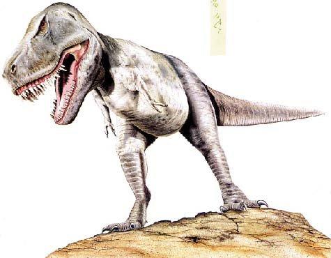 恐龙灭绝的原因与臭氧层空洞密切相关