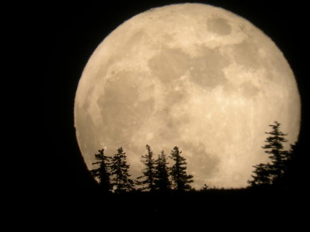 月球或将成为商业公司最大的广告位