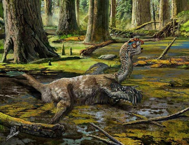 """最新发现一种类鸟恐龙被命名""""通天泥潭龙"""""""