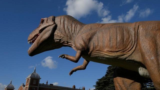恐龙灭绝疑有新元凶 或为太阳孪生兄弟