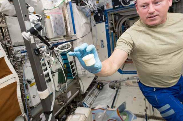 """""""天鹅座""""货运飞船将国际空间站带来新版3D打印机"""
