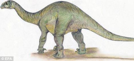 阿拉伯半岛发现了史前恐龙足迹化石