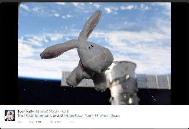 图为斯考特 凯利在其个人Twitter账号上分享的照片:漂浮在半空中的复活节兔子