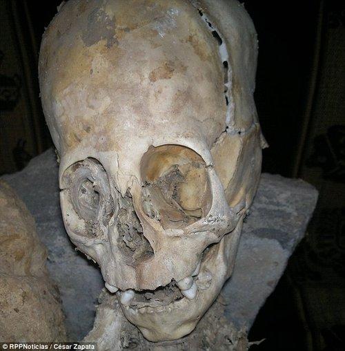 来自西班牙和俄罗斯的3位人类学家对这两具干尸进行了初步研究,认为不属于人类的遗骸