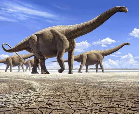 俄专家研究称恐龙灭绝与臭氧层空洞有关