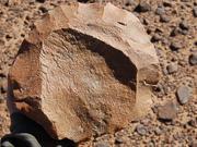 组图:剑桥大学发现50万年前人类石器工具