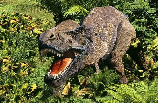 据悉,这一史前爬行动物化石发现已有100多年,保存在美国西部怀俄明州
