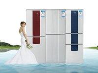 超值三开门冰箱推荐 春节将至购物忙