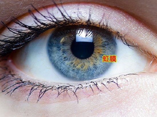科学家发现虹膜或将很快成为被盗窃的目标