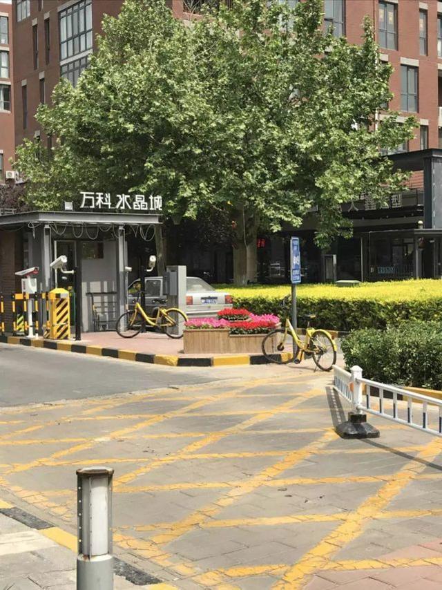 天津一别墅区私搭乱盖17年还加盖甘露楼层苑别墅区图片