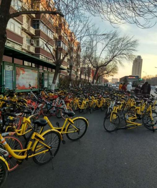 """天津这条路被共享单车围堵 像""""蝗灾"""""""