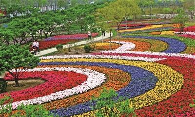 泰达植物资源库百花园亮相