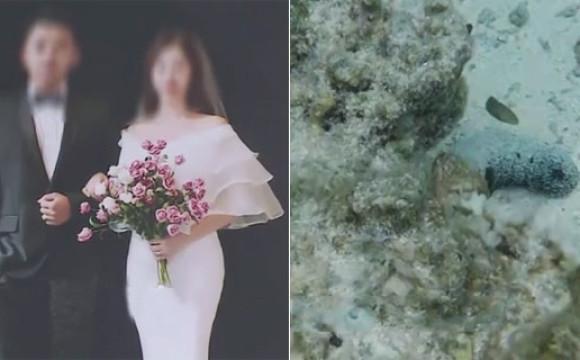 中国夫妻美国蜜月手机掉海底 2周后电话拨通传来汉语