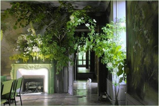 草木梦境 带你领略花卉画家的法式浪漫图片