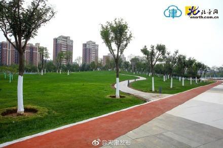 天津西青最大居民休闲公园正式开放