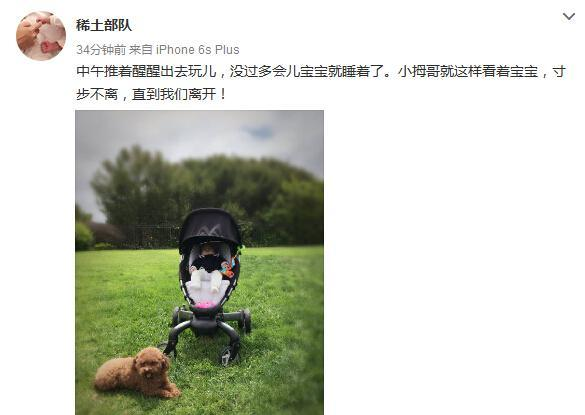 章子怡的幸福生活:一个宝宝一只汪 静静晒太阳