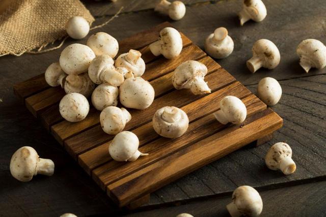 早餐吃蘑菇能瘦身?法媒公布减肥新发现