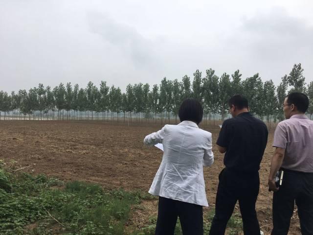 京津冀招商网陪同国有企业城轨车辆产业基地项目考察廊坊高新区