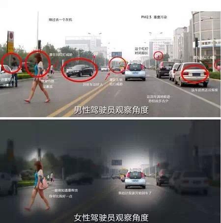 天津男人与天津女人开车的区别 你中枪了吗