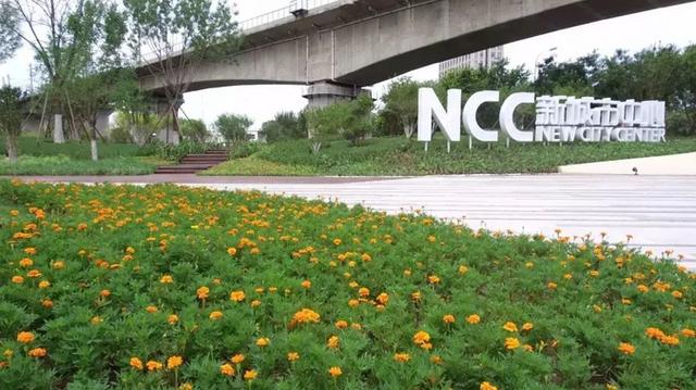 走遍天津   天津首个栈道公园开放!出了地铁口,一步就是一个景