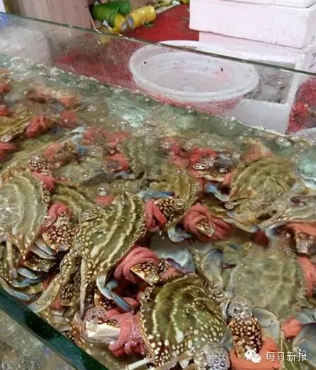 买300块钱海蟹,100块钱是皮筋钱