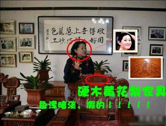 赵忠祥5亿豪宅内外景曝光 奢华程度令人咂舌_