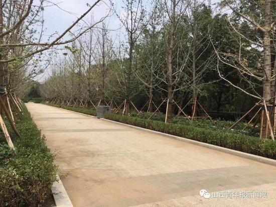 太原一路大成实景,体育中心、公园游园新动态