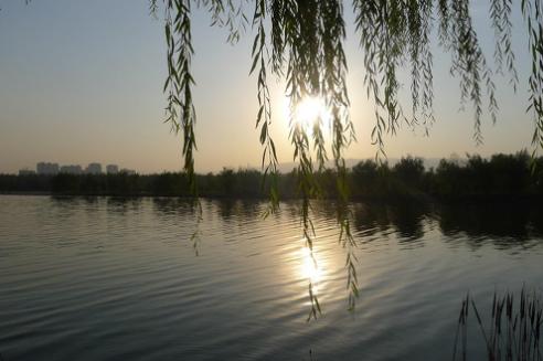 怡和天润园:宜居生态圈,幸福刚刚好!