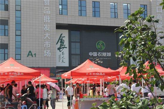 中国·农港城玉环葡萄产品推介会7月8日成功举行