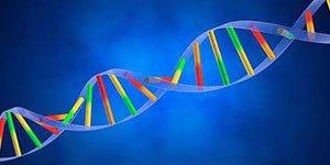 生物医学工程探索