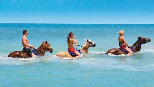 在大海中骑马是怎样的体验?