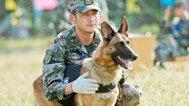 《神犬奇兵》上演丛林激战军犬牺牲