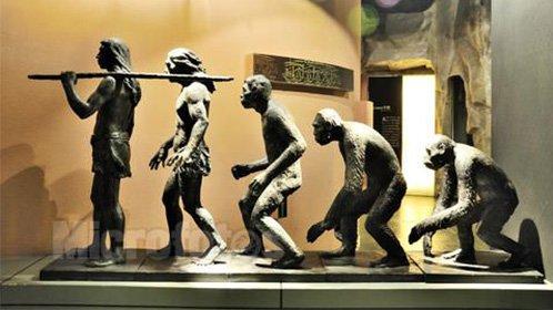 我们还会进化吗?