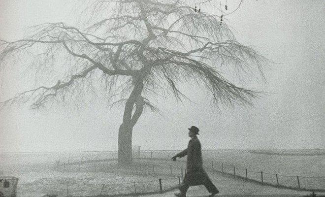 20世纪50年代初的伦敦雾霾