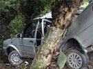 驾校教练飙车害死学员的根源