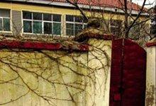 刘家居住的将军楼,也是命案第一现场