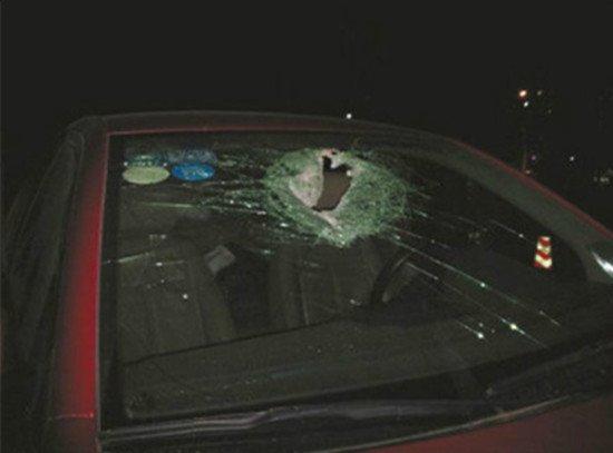 丛飞遗孀就是被在高速边扔石头的少年砸死