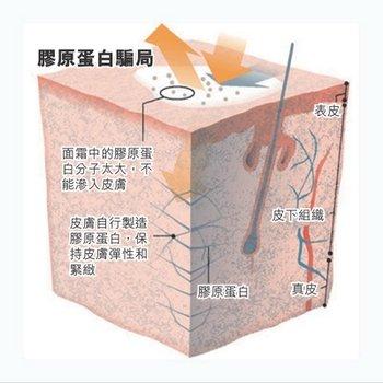 皮肤难以吸收胶原蛋白,相关产品常会添加维E等成分。