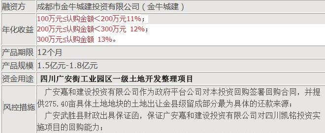 政府担保的融资项目收益率高达11%以上