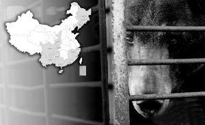 养熊取胆公司上市遭抵制 称反对我等于反对国家