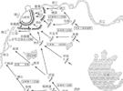 南京保卫战,日军死伤多少人?