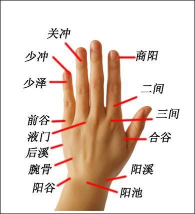 立春过后养生减肥盯紧手指和小腹 - 浮萍 - 浮萍的博客