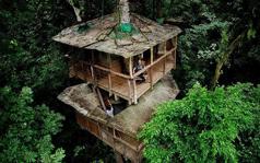 绿色可持续发展树屋