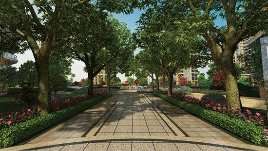行政核心 公园首排 金海首府展厅盛世开放